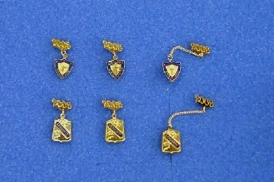 GRADUATE PINS WITH YEAR GUARDS